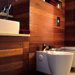Small Bathroom Renovation Ideas Inspirations Perth VIP Bathrooms Contemporary Wood Walls Floating Toilet